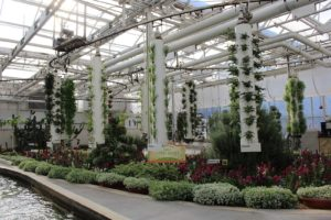 epcot living with the land greenhouse